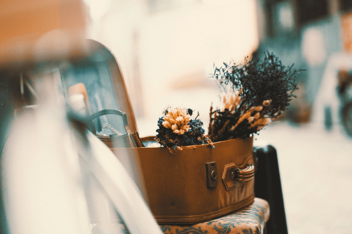 amour, bouquet, brouiller