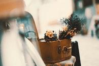 love, flowers, table