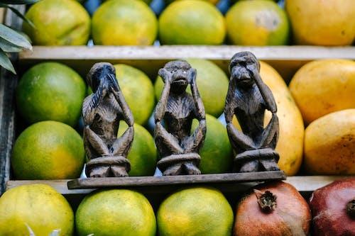 Základová fotografie zdarma na téma apple, barva, čerstvý, chutný