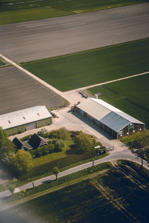 Ingyenes stockfotó drónfelvétel, épületek, fák, farm témában