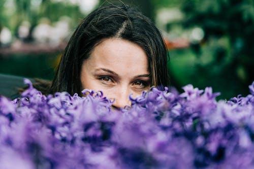 꽃, 보고 있는, 보라색 꽃, 섬세한의 무료 스톡 사진