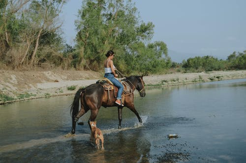 Photo of Woman  Riding a Horse on Body of Water