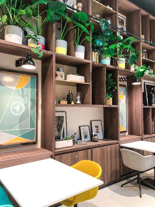 Kostnadsfri bild av arkitektur, bord, dining, hylla