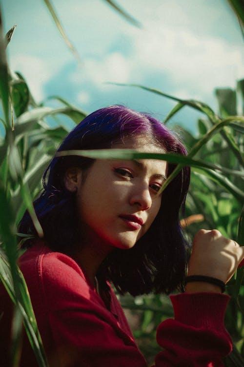 Бесплатное стоковое фото с выражение лица, женщина, зеленые листья, зеленые растения