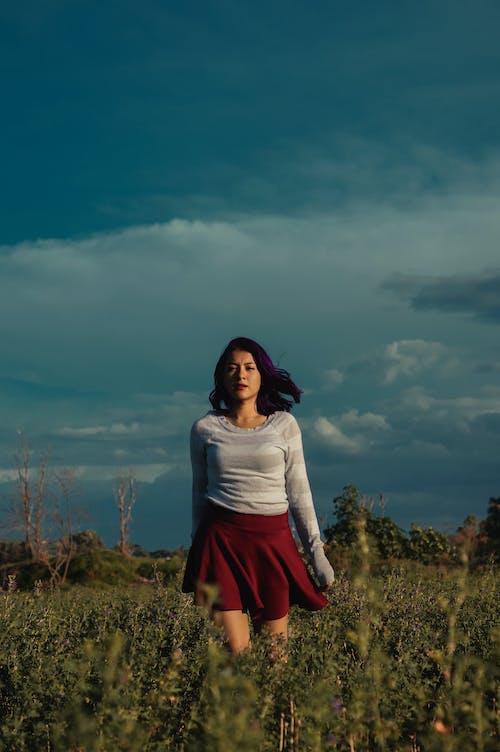 Ảnh lưu trữ miễn phí về áo dài tay, cánh đồng xanh, chụp ảnh, đàn bà