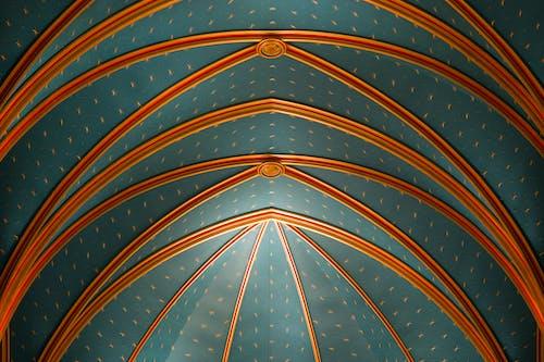 Бесплатное стоковое фото с апельсин, бразилия, голубой, красивый