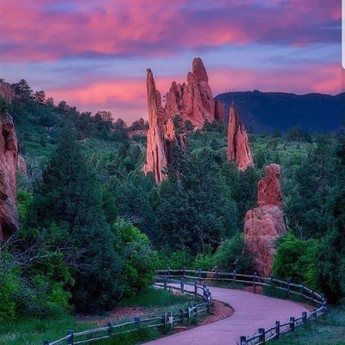 신의 정원의 무료 스톡 사진