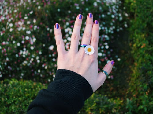 Person Wearing Daisy Flowerring With Purple Nails