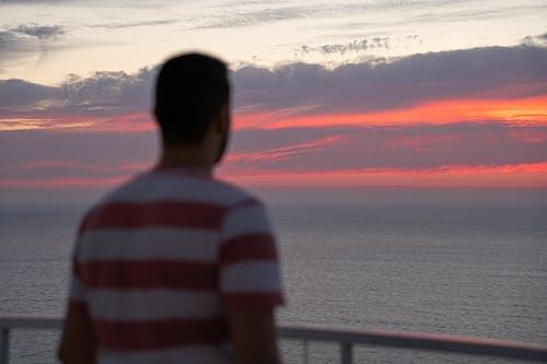 Photos gratuites de ciel, ciel rose, coucher de soleil, dos