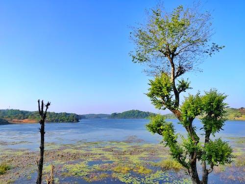 Gratis lagerfoto af blå himmel, flod, flodudsigt, himlen udsigt