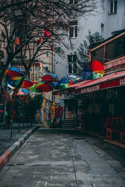 Foto d'estoc gratuïta de art neon, carrer, fons, Fons de pantalla 4k