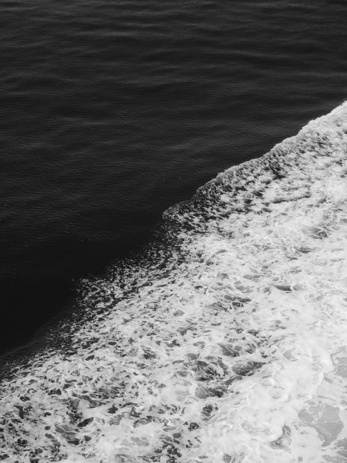 Grayscale Photo of Seafoam