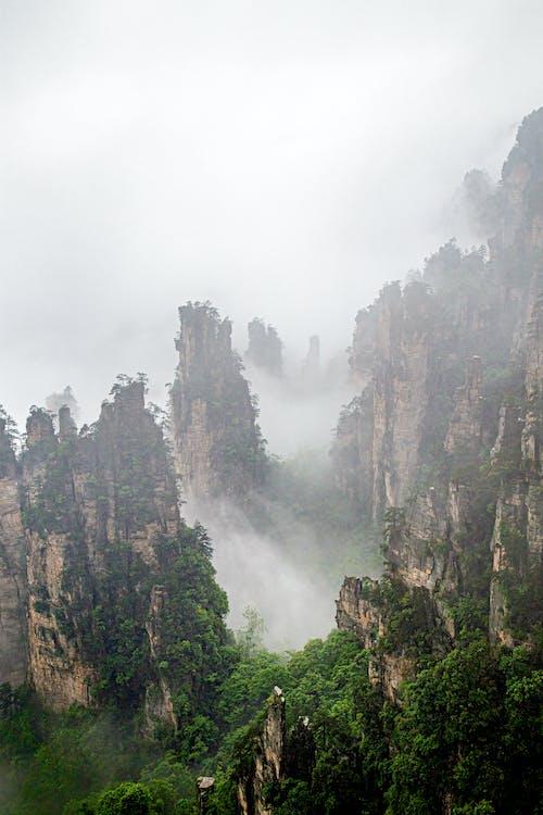 festői, hegy, köd