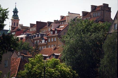 Imagine de stoc gratuită din acasă, acoperiș, apă curgătoare, arbore