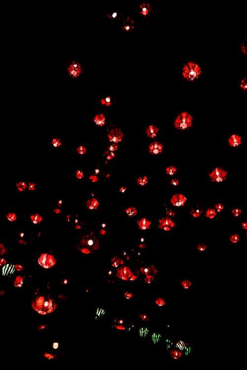 pexels photo 2484840
