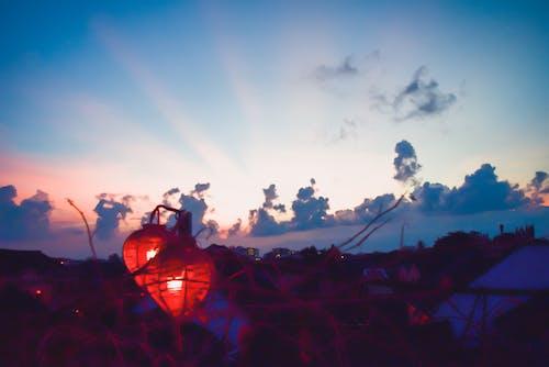 Fotos de stock gratuitas de bonita vista, bosque nuboso, cielo, cielo azul