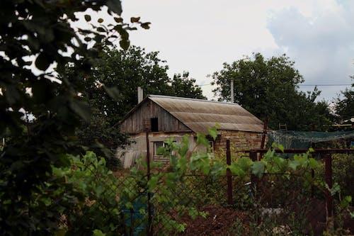 Free stock photo of garden, house
