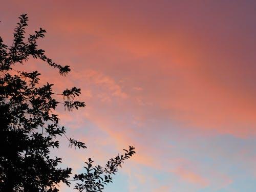 Fotos de stock gratuitas de hermoso cielo al atardecer