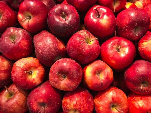 Kostnadsfri bild av äpplen, färsk, friskhet, frukt