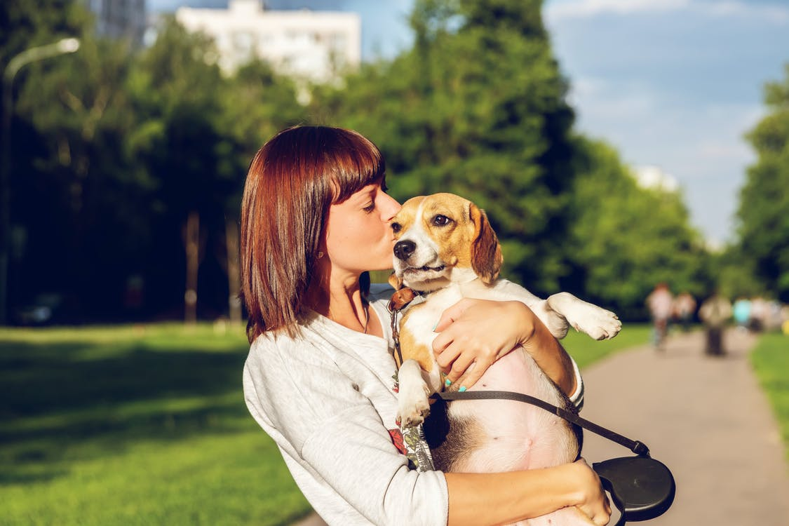 Selective Focus Side View Photo of Woman Kissing a Dog While Carrying it