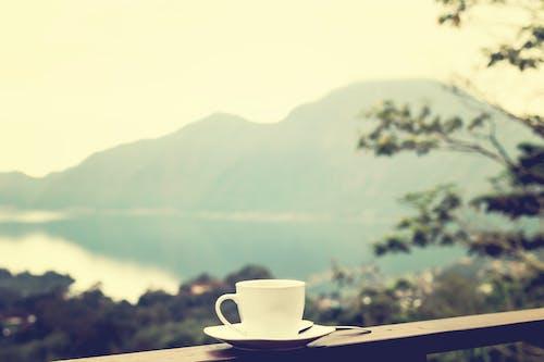 Foto stok gratis alam, balkon, cangkir, cangkir keramik