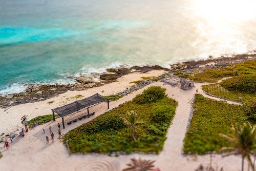 Free stock photo of beach, cozumel, sea