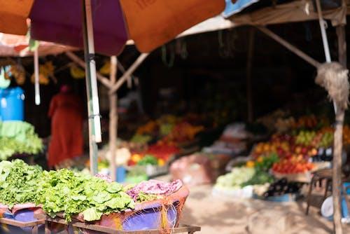 Free stock photo of fresh fruits, fresh vegetables, market