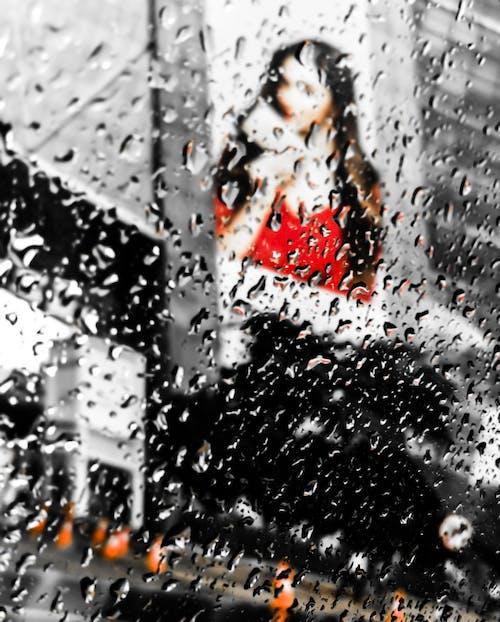 Gratis stockfoto met druilerige dag, na de regen