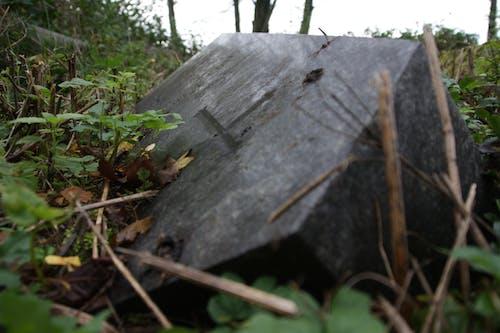 Foto profissional grátis de cemitério, collumn, ficar de pé, lápide