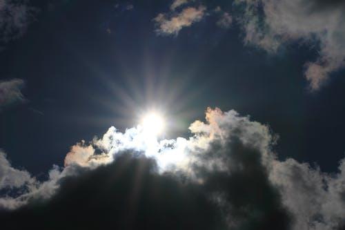 Foto profissional grátis de árvore, brilhante, céu, céu ensolarado