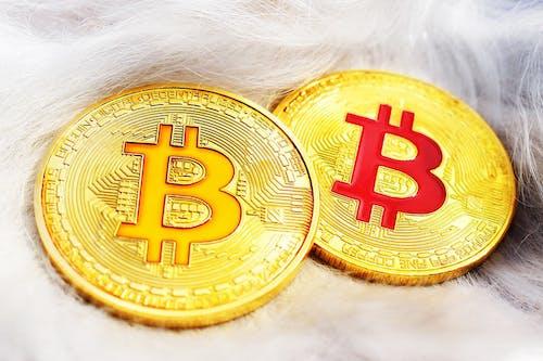 Free stock photo of bitcoin, coin, coins