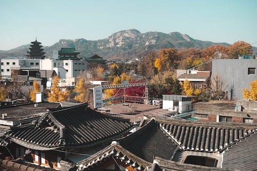 Free stock photo of city, hanok, hanok village, seoul