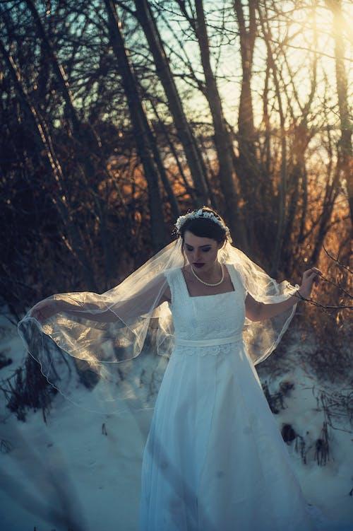Frau, Die Hochzeitskleid Trägt, Das Nahe Bäumen Geht
