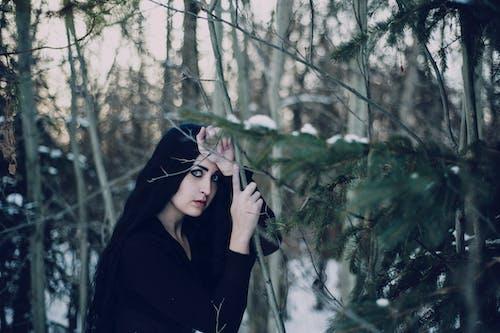 Photos gratuites de arbre, beauté, femme, hiver