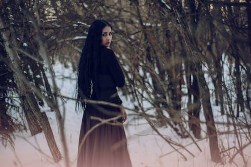 Imagine de stoc gratuită din arbori, de sex feminin, femeie, frig