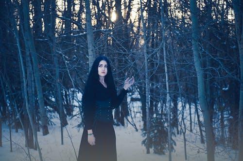 ağaçlar, doğa, Kadın, kar içeren Ücretsiz stok fotoğraf