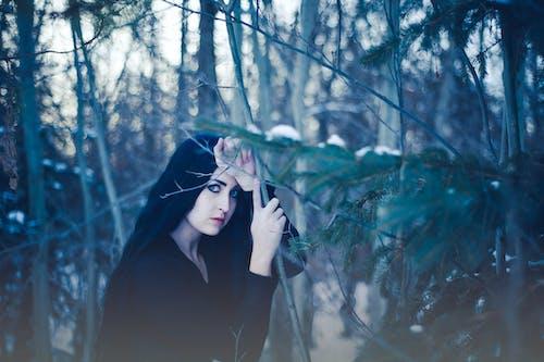 Foto d'estoc gratuïta de bellesa, bonic, dona, hivern