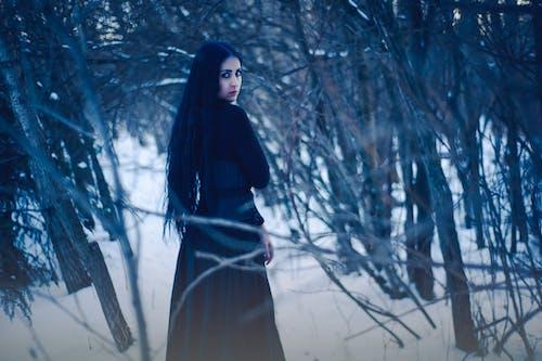 Darmowe zdjęcie z galerii z drzewa, kobieta, mróz, osoba
