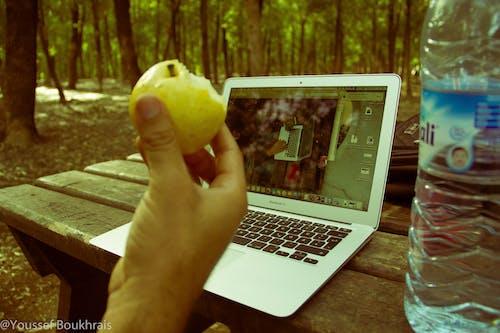 Ilmainen kuvapankkikuva tunnisteilla apple, mac, työ, viidakko