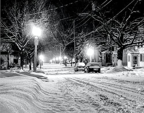 Illuminated Street Light on Snow Covered City