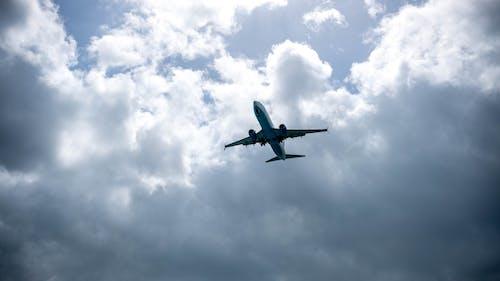 Ilmainen kuvapankkikuva tunnisteilla fuji, lentokone, meri, mustameri