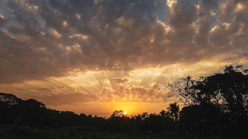 オレンジ色の空, シルエット, ダーク, ビューの無料の写真素材