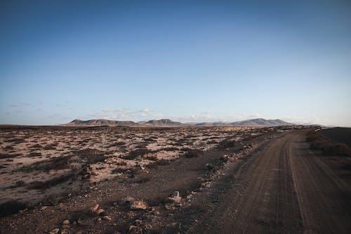 乾旱, 乾的, 地質學, 天性 的 免費圖庫相片