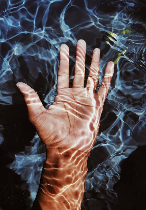 Photo of Person's Hand Submerged in Water