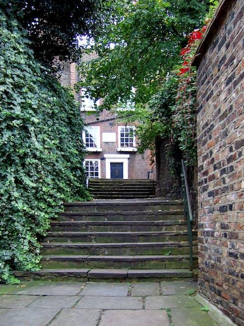 계단, 런던, 마구간, 햄스 테드 히스의 무료 스톡 사진