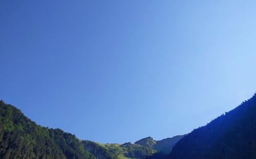 Gratis arkivbilde med Adobe Photoshop, blå, fjell, furu