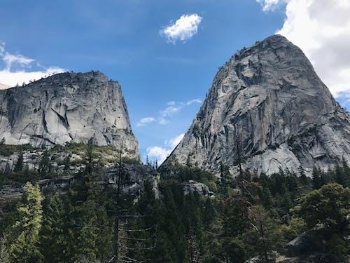 Fotos de stock gratuitas de acantilados, alto, arboles, California