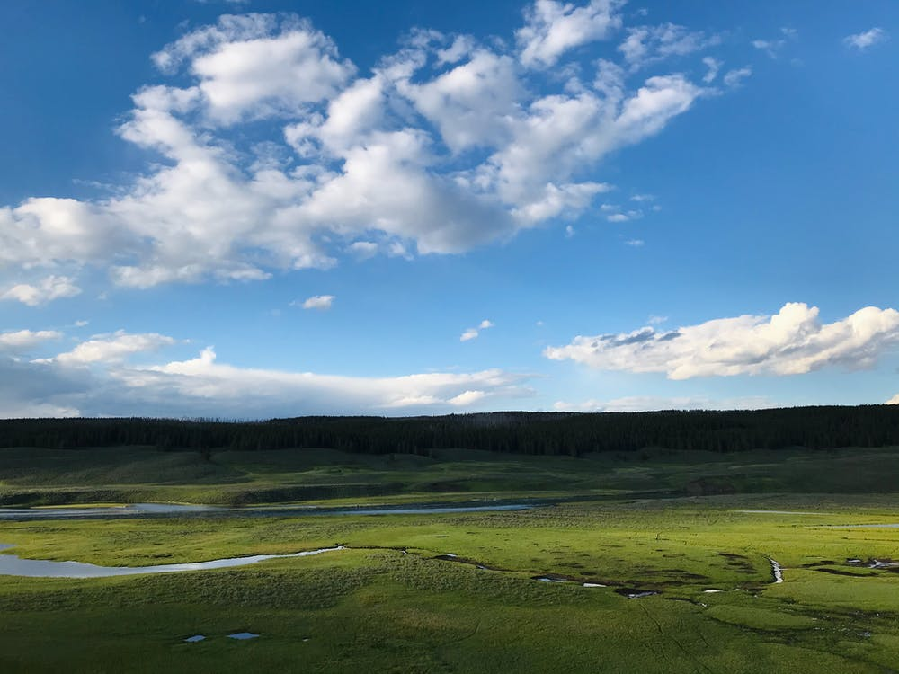 Green Fields Under Clear Blue Sky