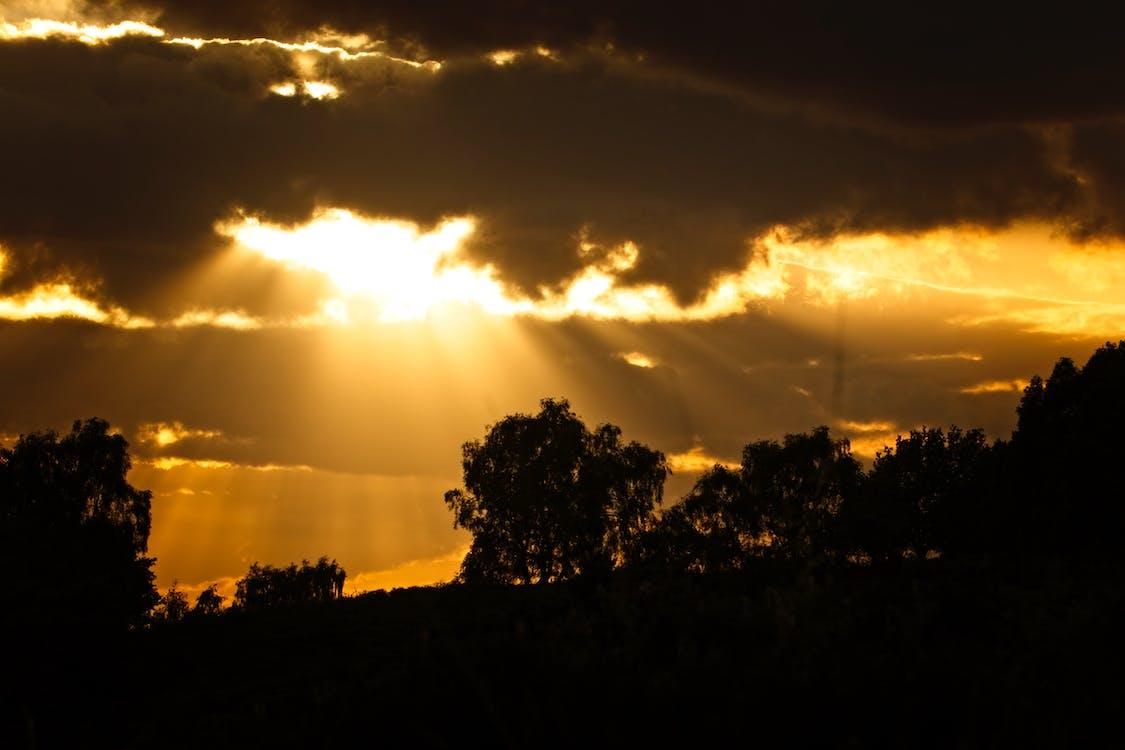 #太阳, #太阳光线