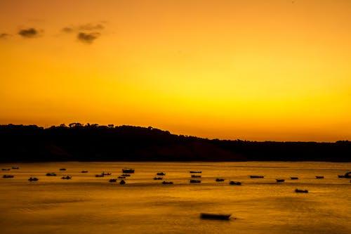 Безкоштовне стокове фото на тему «денного світла, жовтогарячий, Захід сонця, золота година»